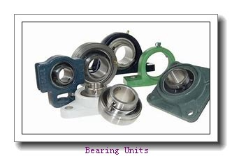 SKF SYNT 60 FTF bearing units
