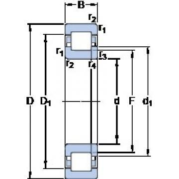 45 mm x 100 mm x 25 mm  SKF NUP 309 ECP thrust ball bearings