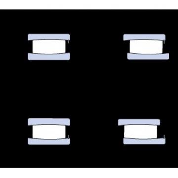 55 mm x 100 mm x 25 mm  SKF C 2211 V cylindrical roller bearings