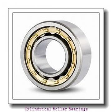 Toyana NNF5020 V cylindrical roller bearings