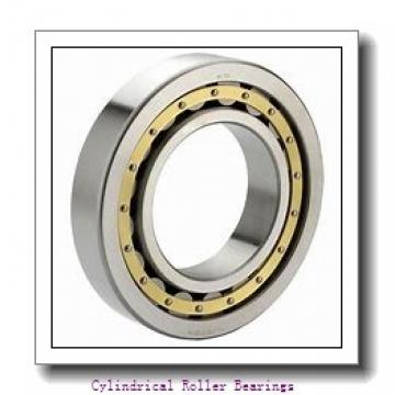 105 mm x 160 mm x 100 mm  ISO NNU6021 V cylindrical roller bearings