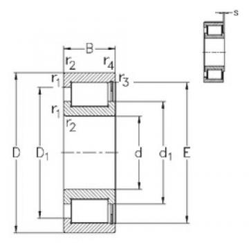 65 mm x 120 mm x 31 mm  NKE NCF2213-V cylindrical roller bearings