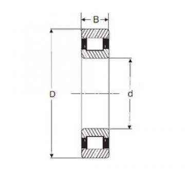 69,85 mm x 158,75 mm x 34,93 mm  SIGMA MRJ 2.3/4 cylindrical roller bearings
