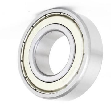 6203 6205z 6206 18 6308 61805 6001RS 6908V 35 55 20 Stainless Bearing