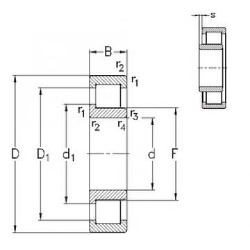 60 mm x 130 mm x 31 mm  NKE NJ312-E-TVP3 cylindrical roller bearings