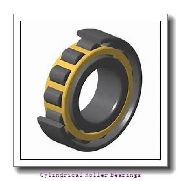 AST NJ313 EM cylindrical roller bearings #1 image