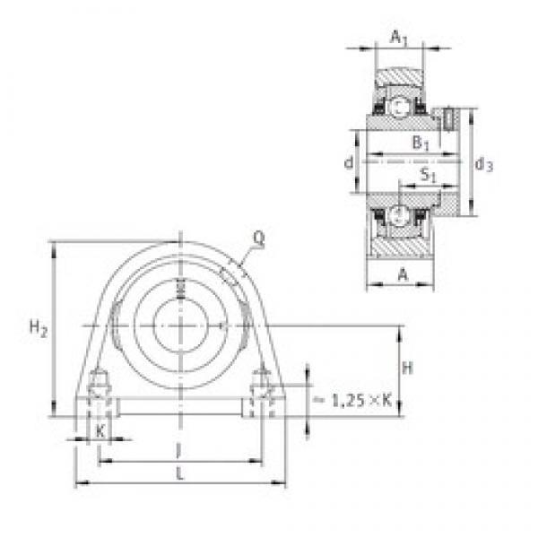 INA TSHE55 bearing units #2 image