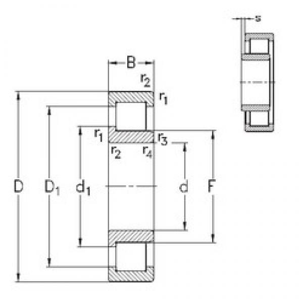 60 mm x 130 mm x 31 mm  NKE NJ312-E-TVP3 cylindrical roller bearings #2 image